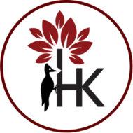 Hout-Kado webshop