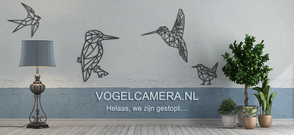 VOGELCAMERA.NL